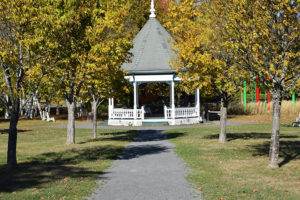 Fleet and Parks and Trees team up for green initiative